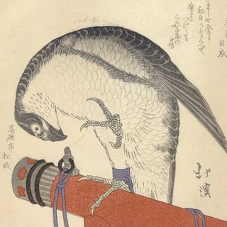 Japanese woodblock print, portrait of a hunter`s hawk