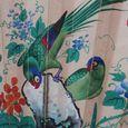 Macao parrots 2
